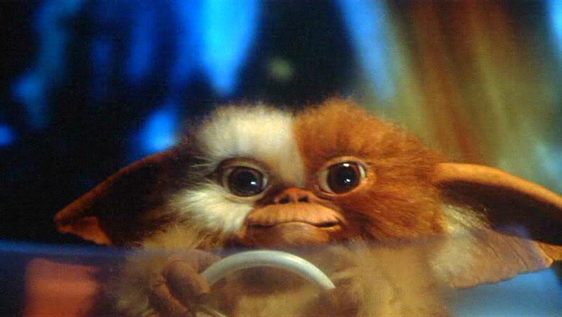 Gremlins-1984-Movie-Picture-01