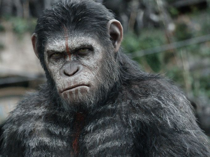Dawn of the Planet of the Apes (2014) - Movie Picture 03
