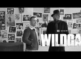 Wildcat-DC-Shorts-324x235