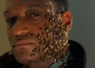 candyman-farewell-to-the-flesh-1995-movie-picture-01-324x235