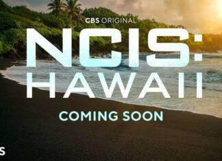 ncis-hawaii-324x235